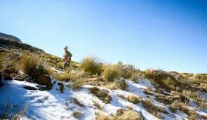 Rhodes Trail Run Ultramarathon