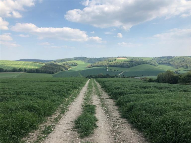 South Downs Way 100 Mile Ultramarathon