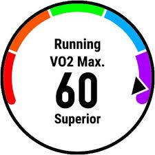 running and vo2 max