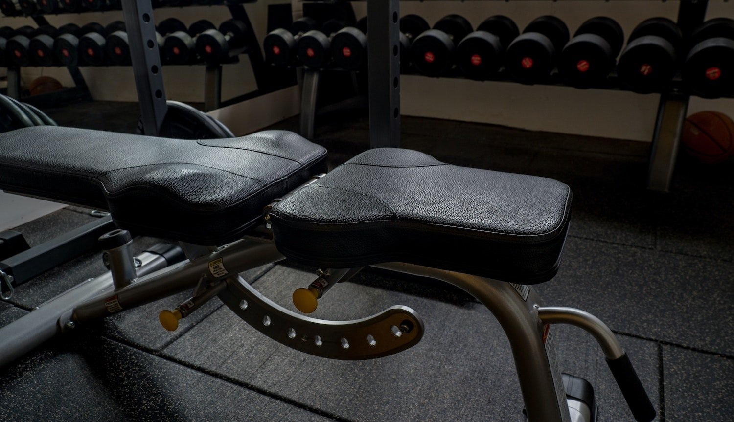 best weight bench for home gyms